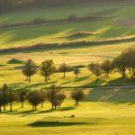 Aberystwyth Golf Club - 02