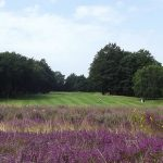 Addington Golf Club - 4th